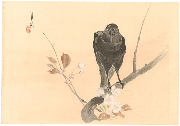 ZP_Cherry Blossom and Crow by Ogata Gekko, 1859 - 1920_print courtesy of ogatagekkodotnet
