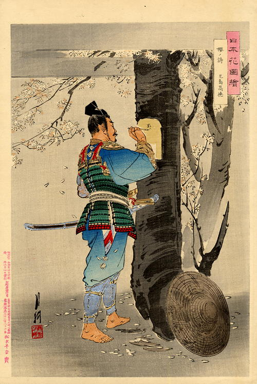 ZP_Samurai writing a poem on a flowering cherry-tree trunk_print by Ogata Gekko 1859-1920 courtesy of ogatagekkodotnet