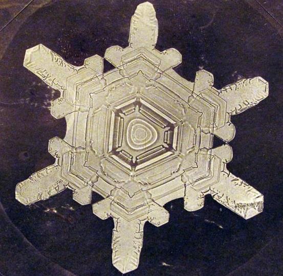 Wilson Alwyn Bentley_Snowflake photomicrograph