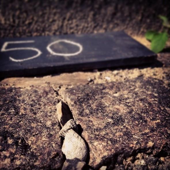 Wangechi Mutu_Day 50_Rwanda Genocide 20th anniversary