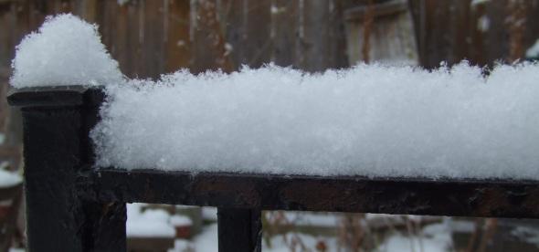 Toronto fresh snowfall_December 2013