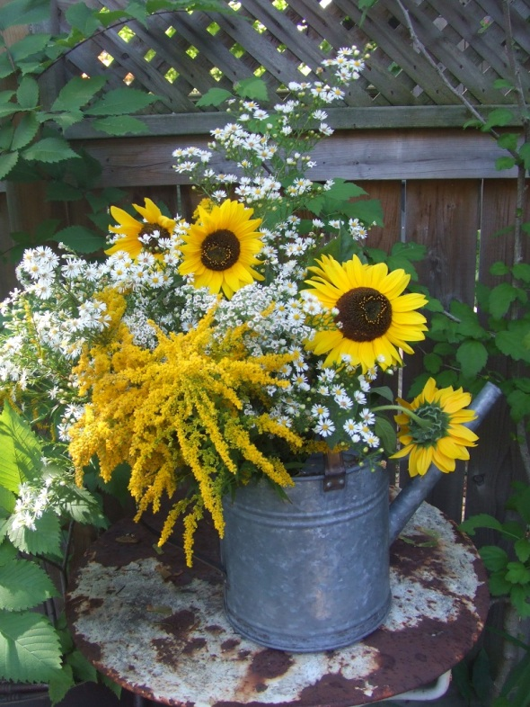 An End of Summer bouquet in a watering can_Goldenrod_Asters_Sunflowers_09.2014