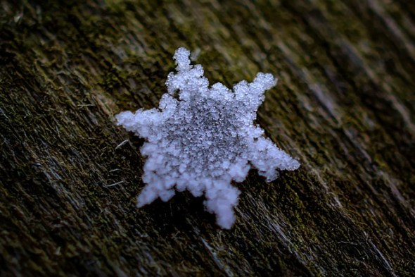 Macro-photograph of a snowflake_taken on November 25th 2014