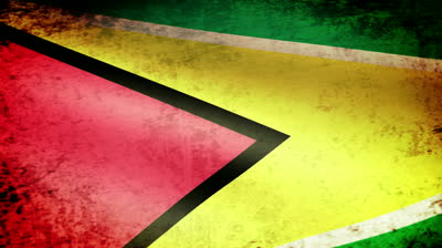 Guyana flag...somewhat scuffed up...