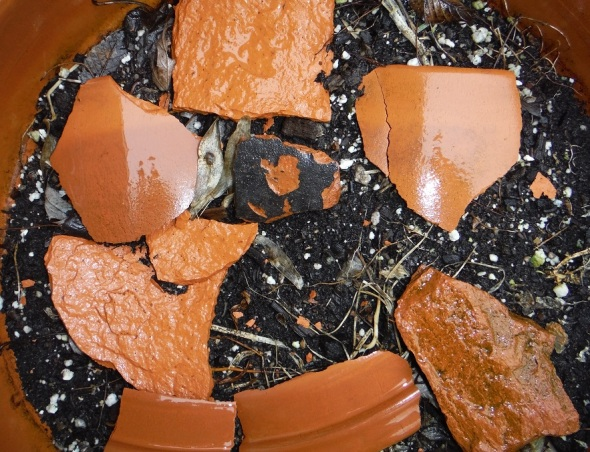 Clay shards in a flowerpot_January 2016_Toronto