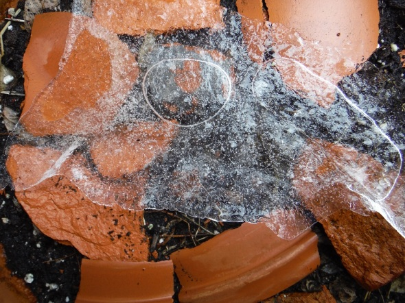 Flowerpot shards and ice B_January 28th 2016_Toronto