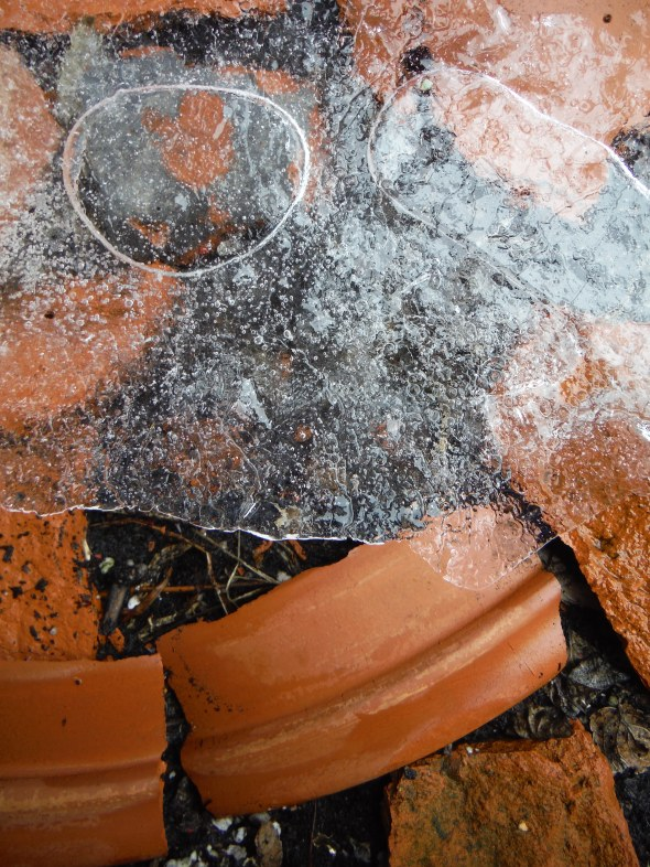 Flowerpot shards and ice C_January 28th 2016_Toronto