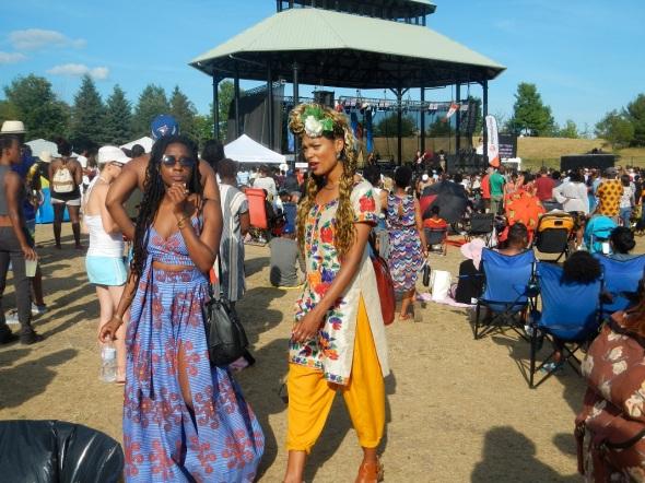 AfroFest 7